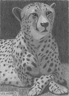 Chillin' Cheetah